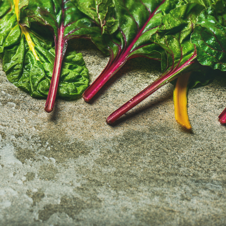 Flat-lay of fresh leaves of swiss chard over concrete stone background, copy space, square crop. Food frame. Clean eating, vegetarian, alcaline diet, organic, healthy cooking concept Stock Photo