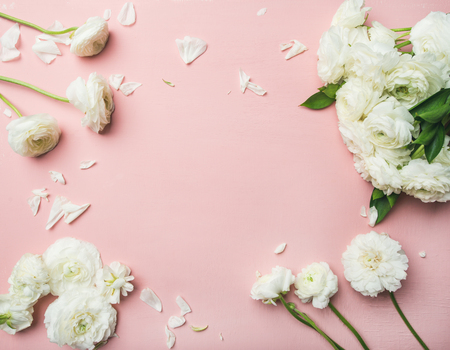 Saint Valentines Day background. Flat-lay of white ranunculus flowers light pink background, top view, copy space, horizontal composition. Greeting card or wedding invitation