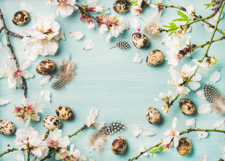 Easter holiday background. Flat-lay of tender Spring almond blossom flowers on branches, birds feathers and quail eggs over light blue background, top view, copy space. Greeting card concept