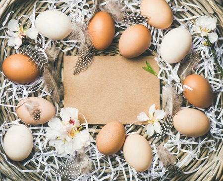 Easter holiday background. Flat-lay of natural colored eggs in basket with tender Spring almond blossom flowers and feathers, top view, copy space. Greeting card concept
