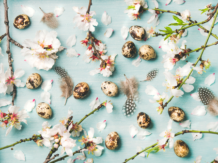 Easter holiday background, texture and wallpaper. Flat-lay of tender Spring almond blossom flowers on branches, feathers and quail eggs over light blue background, top view. Greeting card concept