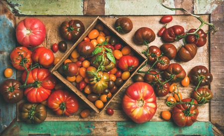 Flat-lay of fresh colorful ripe Fall or Summer heirloom, bunch and cherry tomatoes veriety on tray over painted rustic wooden background, top view. Local market seasonal produce Stock Photo