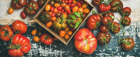 Flat-lay of fresh colorful ripe Fall or Summer heirloom, bunch and cherry tomatoes over rustic wooden background, top view, horizontal composition. Local market seasonal produce Stock Photo