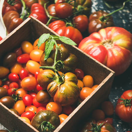 Fresh colorful ripe Fall or Summer heirloom, bunch and cherry tomatoes over rustic wooden background, square crop. Local market seasonal produce Stockfoto