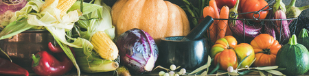 Fall vegetarian food ingredient variety. Assortment of various Autumn vegetables for healthy cooking over rustic cupboard, dark wall background, wide composition. Local market organic produce