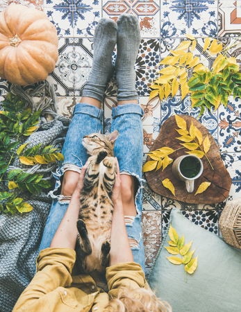 Autumn or Fall balcony tea time. Flat-lay of female sitting on colorful tiled floor with cat, fallen leaves, warm blanket, pumpkin and cup of herbal tea, top view. Autumn mood concept