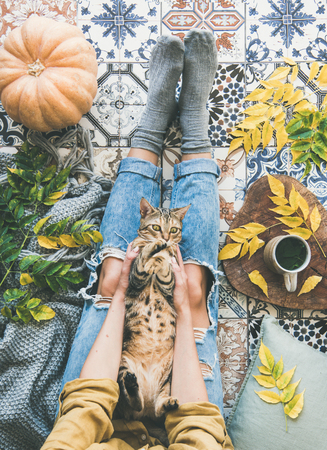 Autumn or Fall balcony tea time. Flat-lay of female sitting on colorful tiled floor with tiger colored cat, fallen leaves, warm blanket, pumpkin and cup of herbal tea, top view. Autumn mood concept