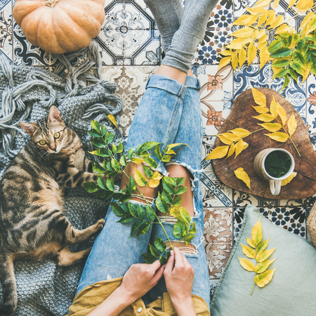 Autumn or Fall balcony tea time. Flat-lay of female and cat sitting on colorful tiled floor, fallen leaves, warm blanket, pumpkin and cup of herbal tea, top view, square crop. Autumn mood concept Stock Photo