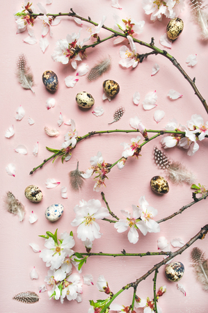 Easter holiday background. Flat-lay of tender Spring almond blossom flowers on branches, feathers, quail eggs over light pink background, top view, vertical composition. Greeting card concept