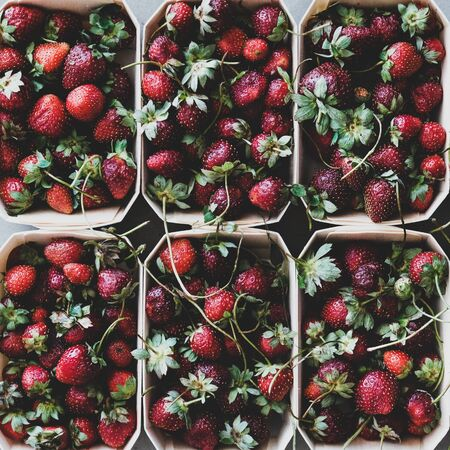 Fresh seasonal summer local market fruit produce texture, wallpaper and background. Flat-lay of garden harvest strawberries in eco-friendly plastic-free boxes, top view, square crop