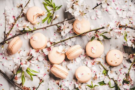 Food texture, wallpaper and background. Flat-lay of sweet macaron cookies and white spring blossom flowers and branches over white marble background, top view