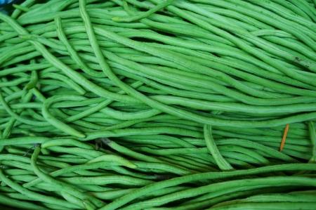 fresh long green beans Stock Photo - 18686336