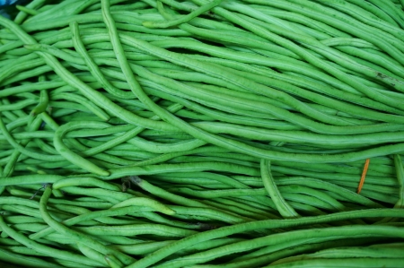 fresh long green beans Stock Photo - 18686336