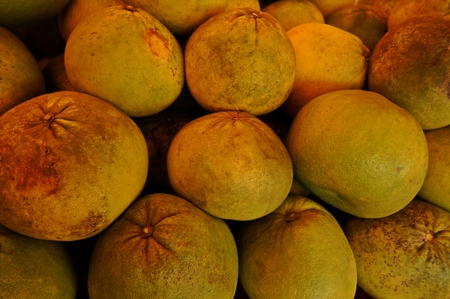 tangy: tangy lemon Stock Photo