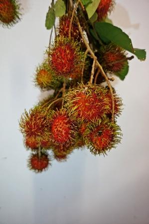 infra: local fruit of rambutan