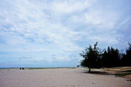 lanscape: beach lanscape view