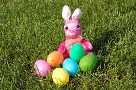 rabbit and plastic egg for Easter decoration photo