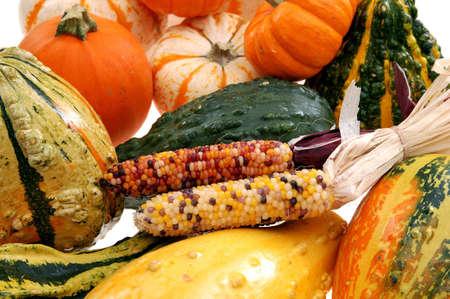 squash and Indiana corn Stok Fotoğraf