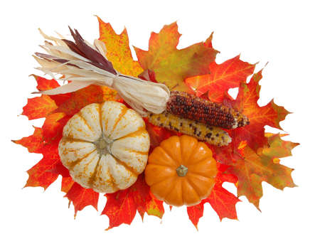 pumpkin and Indiana corn