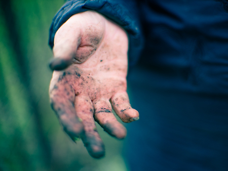 Dirty hand after garden work. Gardener without gloves. Imagens - 121861075
