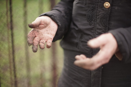 Hands of an elderly woman without gloves, stained soil after working in the garden Banque d'images