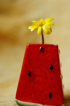 yellow flower in a red watermelon vase, selective focus Imagens