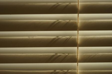 closed horizontal blinds through which the sun shines, closeup front view 写真素材