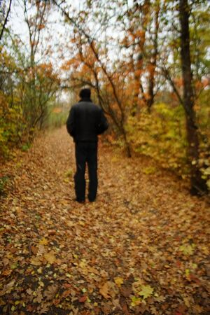 Walk through the autumn forest. Silhouette of a lonely man in black walking on a road with brown leaves. Colorful trees. Blurred image.