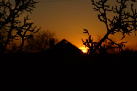 Landscape sunset in the village. Round sun with rays over the roof of the house about the orange sky. Black silhouettes with tree and house branches. 版權商用圖片
