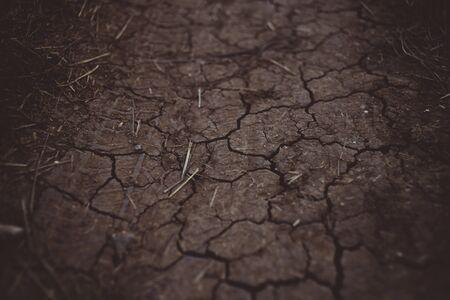 Brown hard earth in cracks, rural road texture close-up Imagens