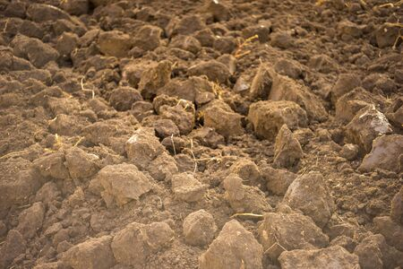 excavated land closeup, fresh soil for background