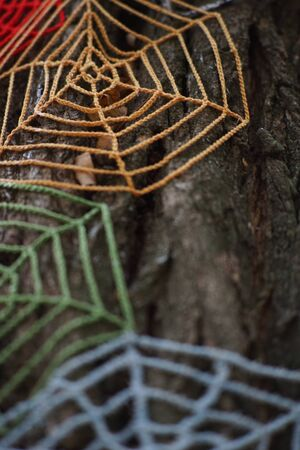 Knitted cobweb of colored threads on a tree trunk close-up