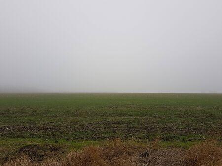 Autumn landscape a green field in a light fog Imagens