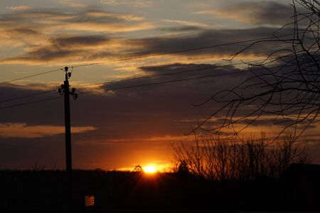 Silhouette of power lines and branches against the sunset sky with the sun