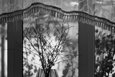 Window with a transparent curtain and dry branches in a vase