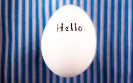 White chicken egg on a striped blue background. Inscription Hello on the shell.
