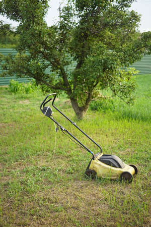 Yellow lawnmower on wheels stands on a mowed lawn in a summer garden. Pear tree on background.