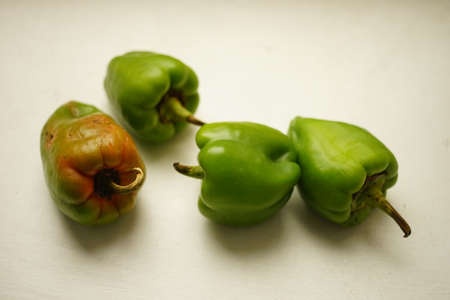 four ripe green peppers on a white table. Фото со стока