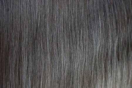 Dark blonde hair close up for background.