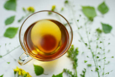 Green tea in a transparent glass cup. Herbs and flowers on a white table around a mug with a drink. Фото со стока