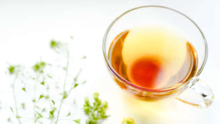 Herbal tea in a glass cup. Herbs and flowers on a white table