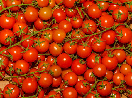 a lot of red tomatoes background photo