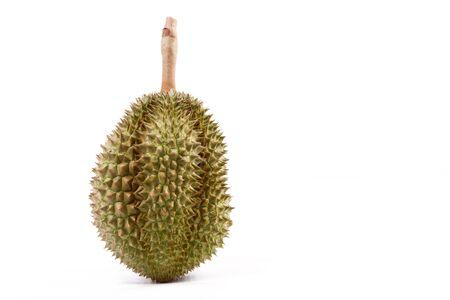 sweet pulp: Saraburi ProvinceThailand fruit from the garden. isolated on white background