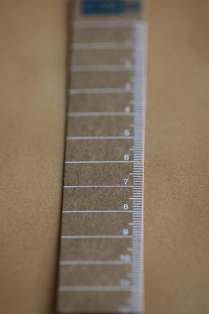 Paper ruler