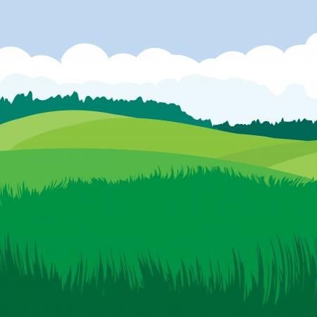 grass field: Green landscape  Illustration