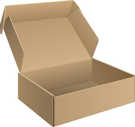 Package cardboard Box Opened Vector