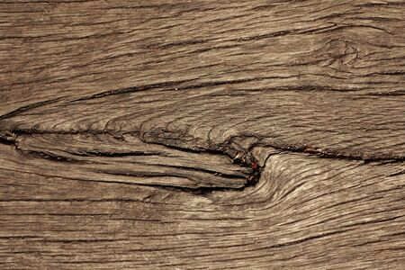 old texture: Wood texture. Old board with knot Stock Photo