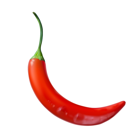 Realistic image of red hot chilli pepper. Vector