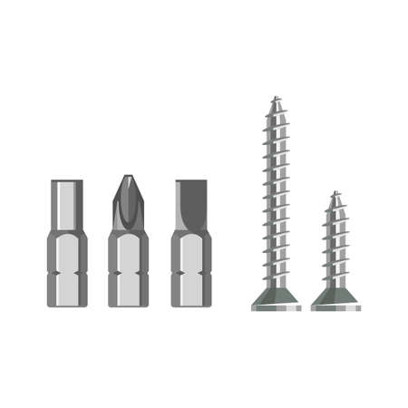 Screwdrivers bit and self-tapping screw.