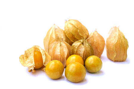 Physalis group on white background. Songkhla, Thailand.